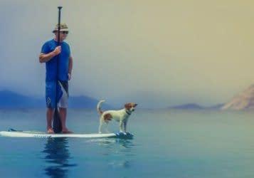 Seniorenmobil-ität, älterer Herr mit Hund auf Paddleboard